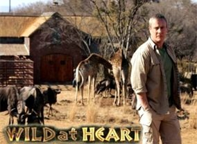Wild at Heart (UK)