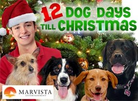 12 Dog Days Till Christmas.12 Dog Days Till Christmas Tv Show Air Dates Track
